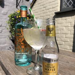 Kings Arms Dorking gin and tonic